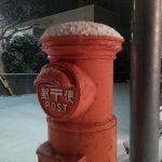 湯浅町で積雪(゚д゚)!